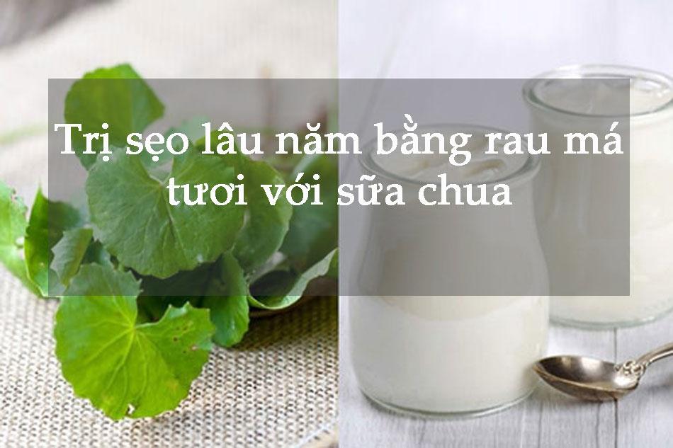 Trị sẹo lâu năm bằng rau má tươi với sữa chua